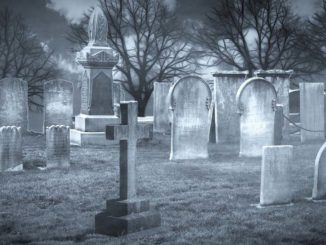 Cmentarz – sennik. Co oznacza cmentarz we śnie?
