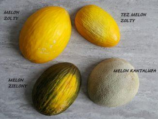 Jak obrać melona? Poznaj sprawdzone sposoby