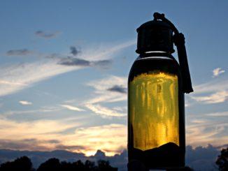 Poznaj sekrety oleju arganowego