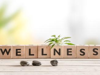 Czym jest wellness?