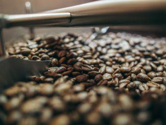 Kawa prosto z palarni – dlaczego jest najlepsza?